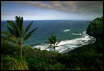 Polulu Beach seen from Polulu Valley overlook. Big Island, Hawaii, USA