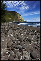 Rocks and black sand beach, Waipio Valley. Big Island, Hawaii, USA