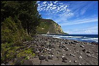Waipio Beach covered with black sand. Big Island, Hawaii, USA
