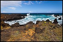 Grasses and volcanic shore, South Point. Big Island, Hawaii, USA