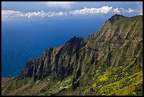 Na Pali Cliffs, seen from Pihea Trail. Kauai island, Hawaii, USA ( color)