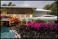 Residence with tropical flowers, Kailua-Kona. Hawaii, USA ( color)
