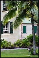 Hulihee Palace detail with coconut tree, Kailua-Kona. Hawaii, USA ( color)