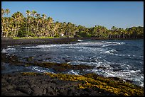 Punaluu beach. Big Island, Hawaii, USA ( color)