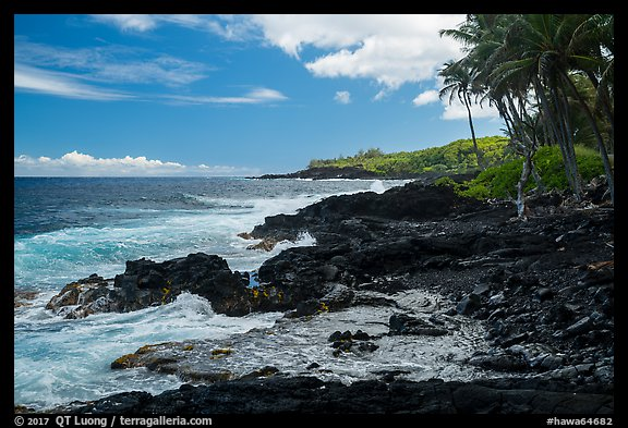Jagged lava coastline, Puna. Big Island, Hawaii, USA (color)