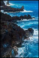 Jagged lava ribs and ocean, MacKenzie State Recreation Area. Big Island, Hawaii, USA ( color)