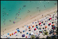 Aerial view of palm trees and beach with umbrellas looking down, Waikiki. Waikiki, Honolulu, Oahu island, Hawaii, USA ( color)