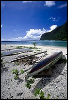Traditional polynesian canoes near the Asaga Strait, Ofu Island. American Samoa ( color)