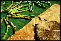 Pandanus leaves and a finished toga (mat) made out of it. American Samoa ( color)