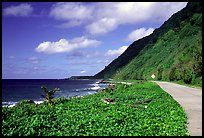 The road between Fitiuta and Luma. American Samoa ( color)