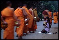 Buddhist monks walking past alm-giving woman. Luang Prabang, Laos (color)