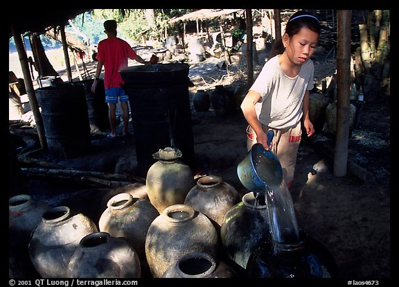 Making of the Lao Lao, strong local liquor in Ban Xang Hai village. Laos (color)
