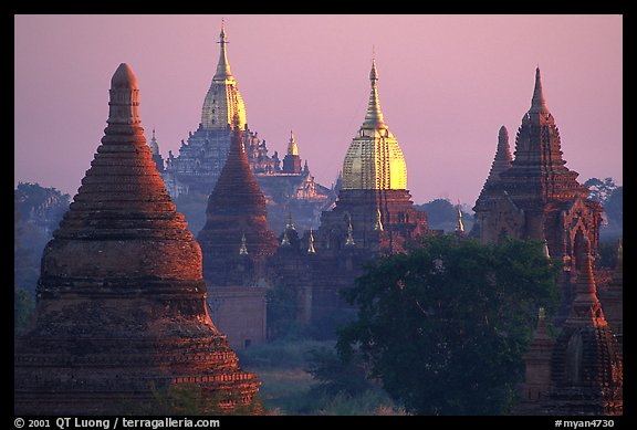 Innumerable temples seen from Mingalazedi. Bagan, Myanmar (color)