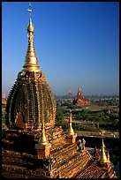 Gilded temples seen from Dhammayazika. Bagan, Myanmar
