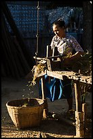Villager processing harvest. Bagan, Myanmar ( color)