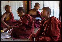 Buddhist monks studying, Shweyanpyay Monastery, Nyaung Shwe. Inle Lake, Myanmar ( color)