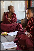 Novices studying, Shweyanpyay Monastery, Nyaung Shwe. Inle Lake, Myanmar ( color)