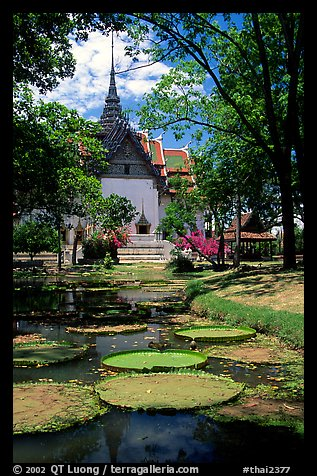 Lotus pond and Ayuthaya-style temple. Muang Boran, Thailand (color)