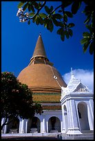 Phra Pathom Chedi, the tallest buddhist monument in the world. Nakhon Pathom, Thailand