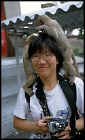 Monkeys climb on a tourist, San Phra Kan. Lopburi, Thailand ( color)