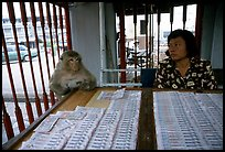 Lottery tickets vendor and monkey, San Phra Kan. Lopburi, Thailand