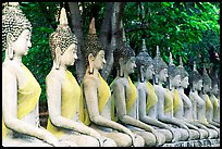 Row of Buddha images in Wat Chai Mongkon, reverently swathed in cloth. Ayutthaya, Thailand ( color)