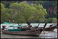 Boats, mangroves, and cliff, Rai Leh East. Krabi Province, Thailand ( color)