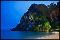 Cliffs and trees at night, Rai Leh East. Krabi Province, Thailand ( color)