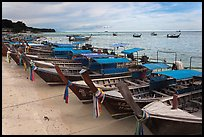 Longtail boats lined up, Ao Ton Sai, Ko Phi Phi. Krabi Province, Thailand ( color)