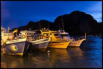Fishing and tour boats at night, Ko Phi-Phi Don. Krabi Province, Thailand (color)