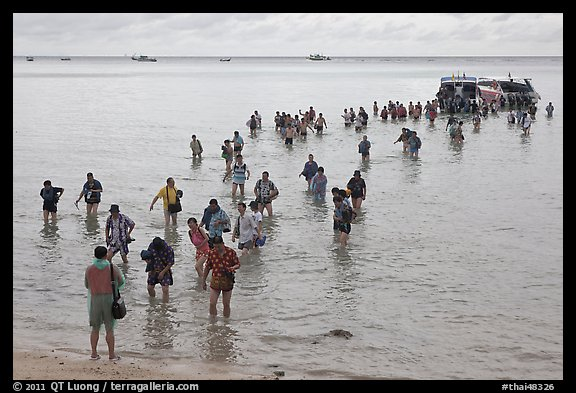 Crowd walking in water, Ko Phi-Phi island. Krabi Province, Thailand