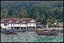 Houses and hillside, Ton Sai, Phi-Phi island. Krabi Province, Thailand ( color)