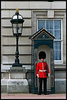 Guard and guerite, Buckingham Palace. London, England, United Kingdom (color)