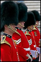 Musicians of the Guard  with tall bearskin hat and red uniforms. London, England, United Kingdom ( color)