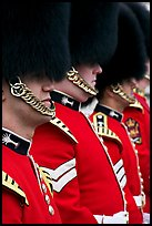 Guards with tall bearskin hat and red tunic standing in a row. London, England, United Kingdom ( color)