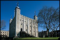 White Tower and tree, the Tower of London. London, England, United Kingdom ( color)