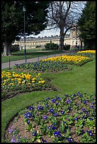 Flowers in park, with Royal Crescent in the background. Bath, Somerset, England, United Kingdom