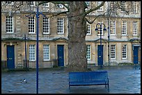 Blue metal bench and tree, Kingsmead Square. Bath, Somerset, England, United Kingdom (color)