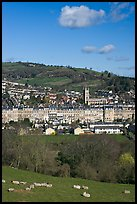 Sheep and distant view of town. Bath, Somerset, England, United Kingdom