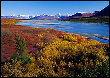 Susitna River and fall colors on the tundra, Denali Highway. Alaska, USA ( color)