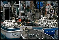 Commercial fishing boats. Whittier, Alaska, USA (color)