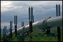 Trans-Alaska Pipeline near Richardson Highway. Alaska, USA (color)