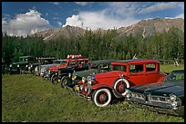 Vintage cars lined up in meadow. McCarthy, Alaska, USA ( color)