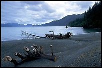 Beach and Resurection Bay at Lowell Point. Seward, Alaska, USA (color)
