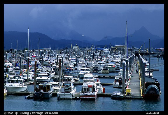 Small Boat Harbor on the Spit. Homer, Alaska, USA (color)