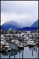 Small Boat Harbor on the Spit with Kenai Mountains in the backgound. Homer, Alaska, USA ( color)