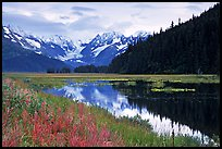 Chugatch Mountains reflected in pond near Portage. Alaska, USA ( color)