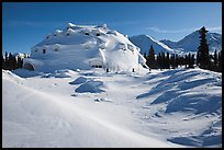 Igloo-shaped building in snowy landscape. Alaska, USA ( color)