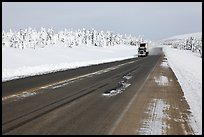 Dalton Highway bordered by snow-covered trees. Alaska, USA ( color)