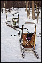 Sleds used for dog mushing. Wiseman, Alaska, USA (color)